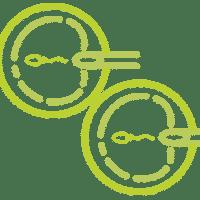 Интрацитоплазматическая инъекция сперматозоида в ооцит ИКСИ